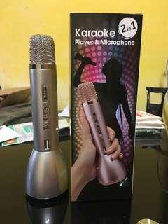 Karaoke Mic