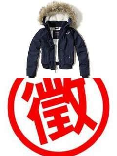 徵收 相同/類似款式 Hollister Jacket