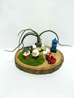【Stroll】Loving Old Couples  Miniature Figurine Ornament with Air plant (Tillandsia) Display Terrarium Decoration for Home Office Gift