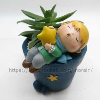 The Little Prince Small Planter with Succulent