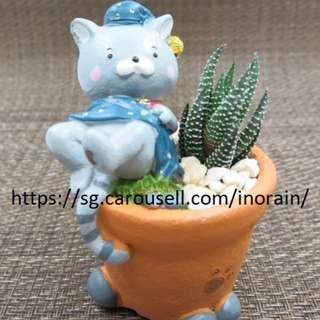 Sleeping Cat Planter with Succulent