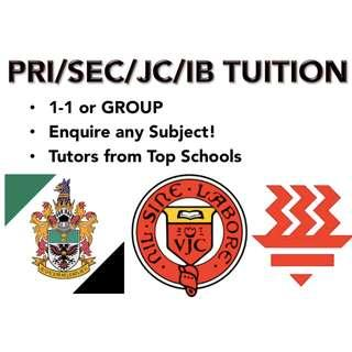 Primary/Secondary/JC/IB/MUSIC/LANGUAGE 1-1/GROUP Private Lessons