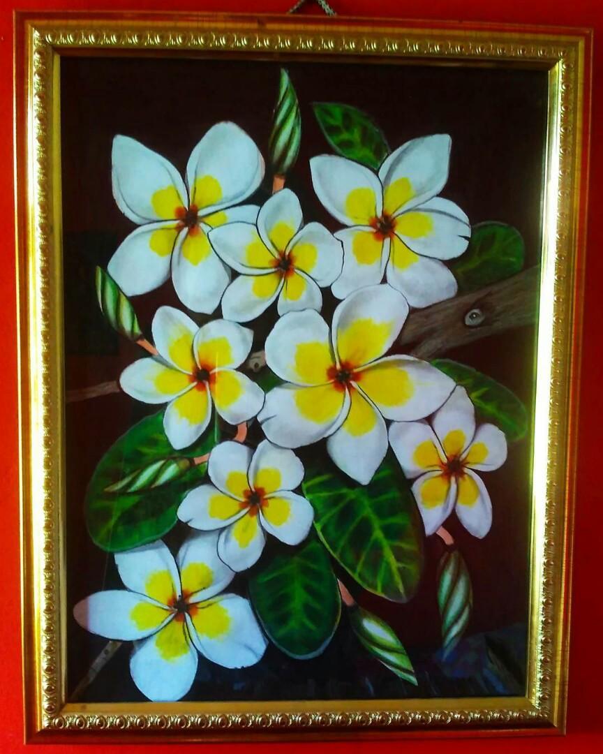 Download 830 Gambar Bunga Kamboja Sketsa HD Paling Keren