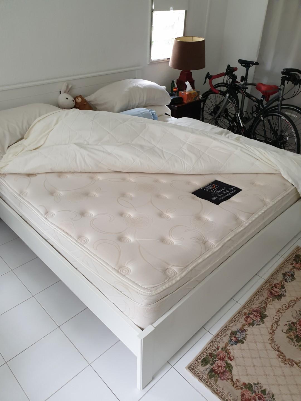 Sleepy Night Avenir Pillow Top King Size Mattress Frame