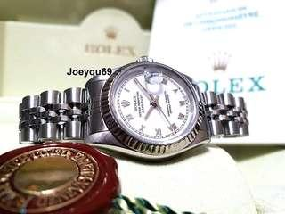 ROLEX DATEJUST Ladies white gold Bezel White Big Roman No Pinhole Cert/Box! !