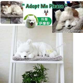 Dog large lifelike handcrafted for decoration collection adoption