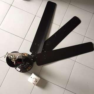 Black ceiling fan with regulator