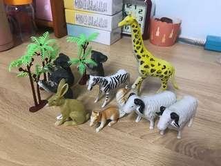 🚚 動物園組合 各種動物