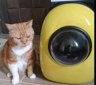 貓貓太空艙袋(只限九龍灣地鐵站交收)