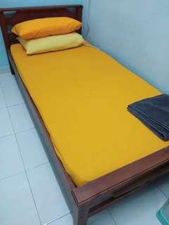 Solid Wood Single Bed + Mattress