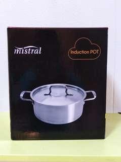 Mistral induction pot (22cm by 12cm)