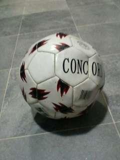 Concord Football Official European Panel