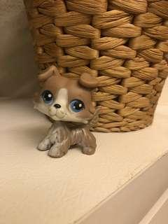 LPS LITTLEST PET SHOP GREY COLLIE DOG