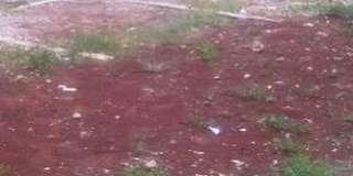 Tanah kosong di Ciganjur