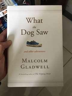 what a dog saw