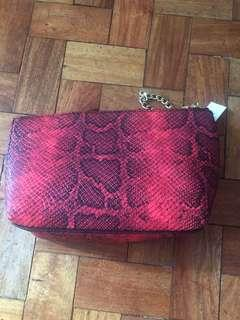 H&M Clutch and Bag