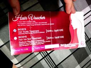 Voucher for biosys hair ice scalp treatment at T&C Beauty House