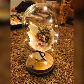 Dried Flowers 🌸 Glass Dome