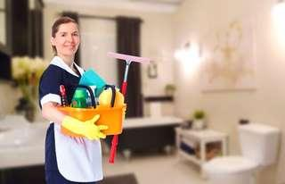 Looking for housekeeper cleaning lady today!