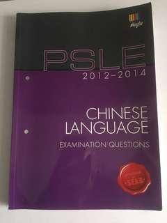 Psle chinese exam papers