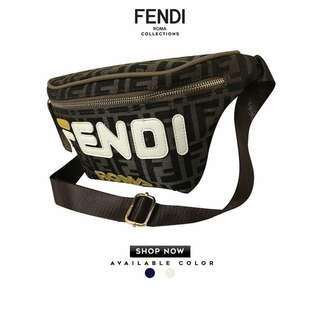 Fendi Body and belt bag