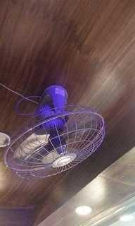 Ceiling Fan Eureka