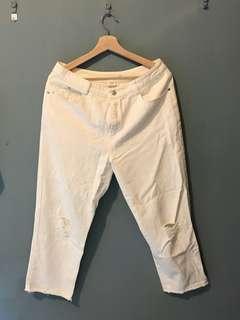 Pazzo 白色單寧褲