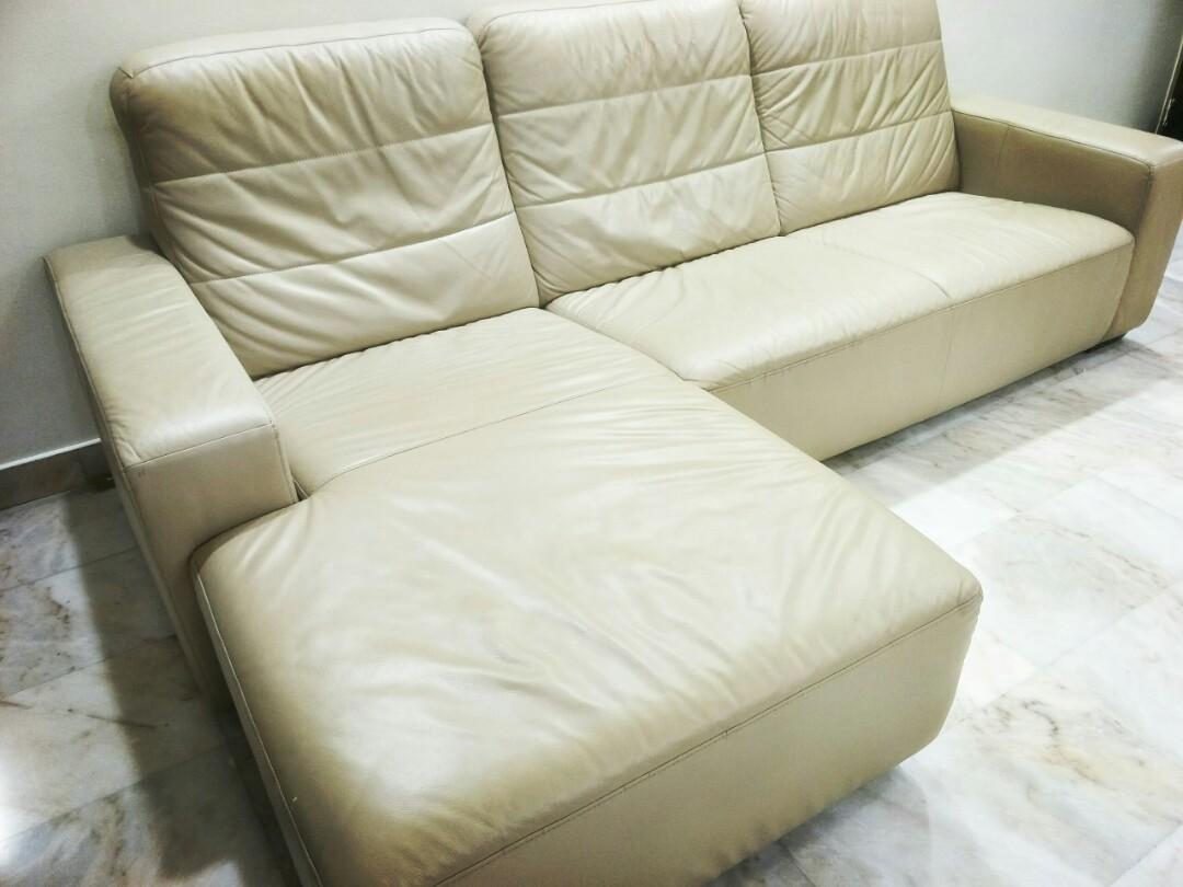 Star Comfort Sofas Price Negotiable Urgent Sales Furniture Sofas