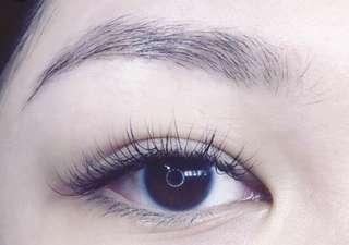 Eyelashes extension model