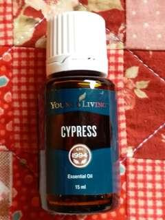 Young Living 精油全新Young living Essential Oils 100%全天然香薰精油cypress 15ml 包平郵