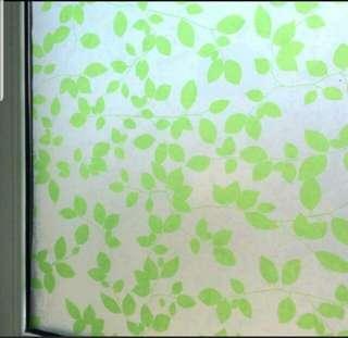 Windows / Glass Film
