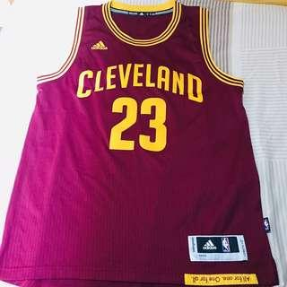 NBA LeBorn James Cleveland Jersey Adidas M size