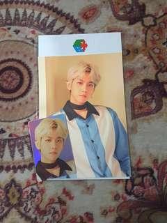 EXO BAEKHYUN BLOOMING DAYS HOLOGRAM CARD SET