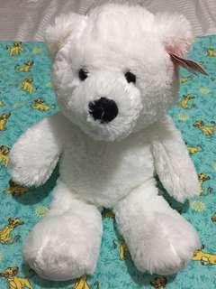 White Teddy Beat