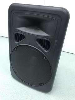 Professional portable wireless amplifier