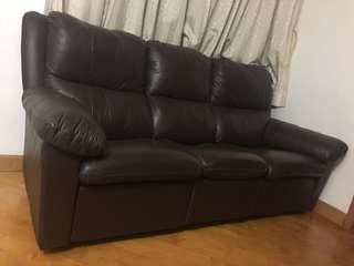 真皮梳化 Leather Sofa