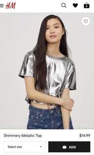 H&M Shimmery Metallic Crop Top
