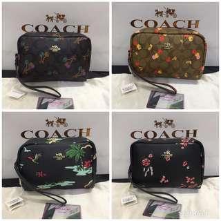 Coach pouch