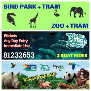 Zoo / River Safari / Bird Park      Zoo / River Safari / Bird Park