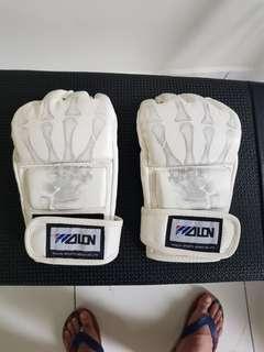Half finger MMA/Boxing gloves