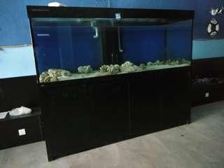 Fish Tank with Carbinet