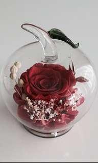 🚚 Premium Preserved Ecuadorian Rose