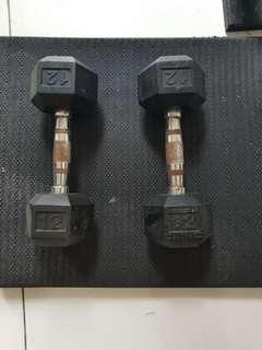 12lbs pair of dumbbells