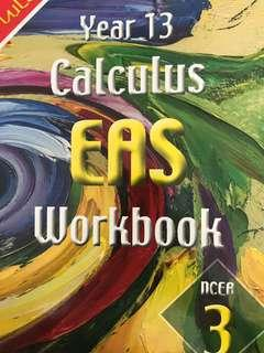 Year 13 calculus workbook NCEA level 3 nuLake