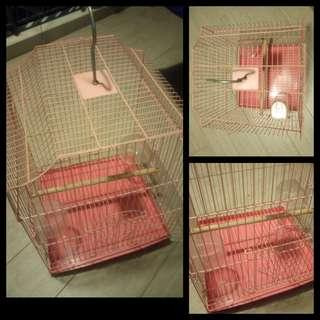 metal cage n finch