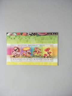 Taiwan MS Fungi