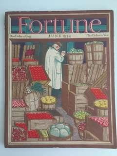 Vintage Fortune Magazine June 1934