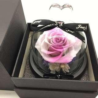 🚚 NEW Arrivals - Premium Preserved Ecuadorian Roses