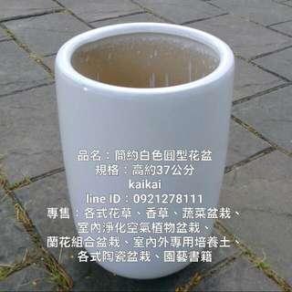 簡約白色陶瓷圓型花盆,優惠500元