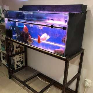 Fish Tank With Stand (Fishes included)